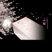 櫻花 粉布張山型款